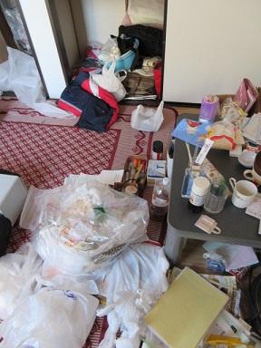 大量ごみ、部屋片づけ