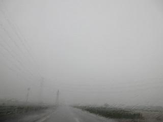 ゲリラ豪雨、夕立ち。