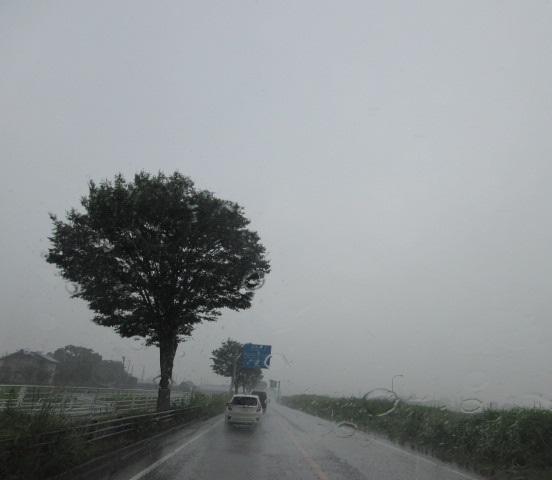 夕立ち、ゲリラ豪雨